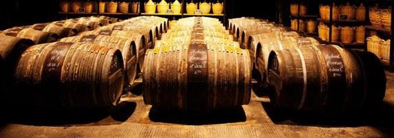 Grand Cognac se mobilise pour accompagner les habitants